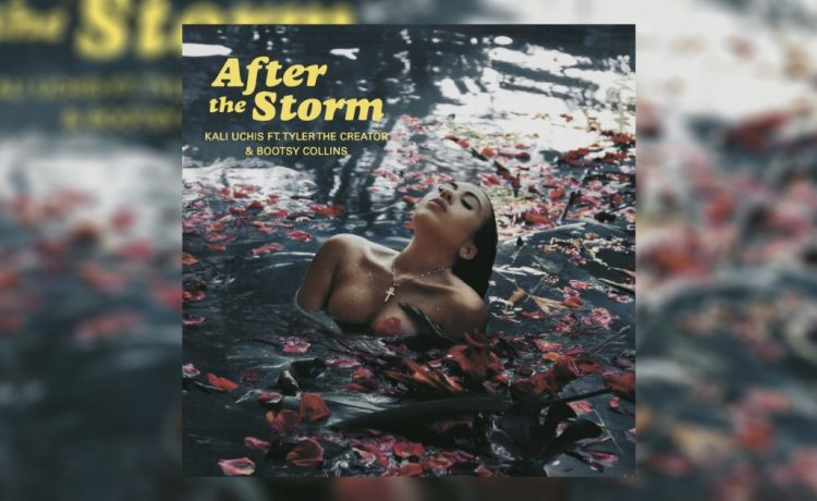 """After the Storm"" Cover Art"
